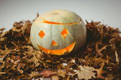 Взгляд высокого угла загоренных фонариков jack o с листьями осени Стоковое Фото