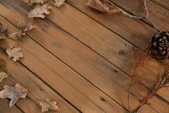взгляд высокого угла конуса сосны и высушенных листьев Стоковое Фото