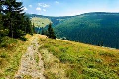 Взгляд в гигантских горах Стоковое Изображение RF