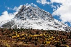 Взгляд в гористой местности, Тибете, Китае стоковое изображение