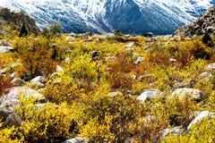 Взгляд в гористой местности, Тибете, Китае стоковые изображения rf