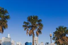 Взгляд горизонта Сиднея CBD как увидено от гавани милочки Стоковые Изображения RF