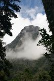 Взгляд горного пика с завальцовкой тумана внутри стоковая фотография