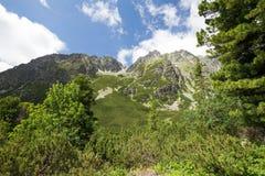 Взгляд горного пика Стоковое Изображение RF