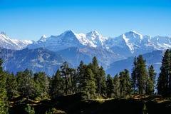 Взгляд горных вершин bernaise стоковое фото