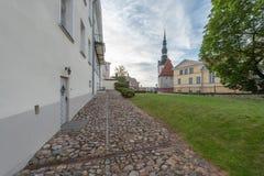 Взгляд городка Эстонии Таллина старый рано утром стоковая фотография