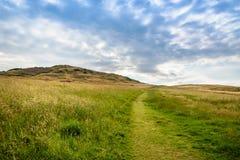 Взгляд горы и травы с голубым небом стоковые изображения