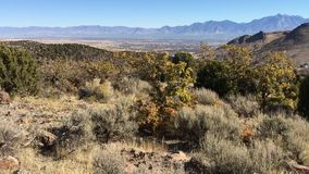 Взгляд горы пустыни долины и Уосата озера сол передние в падении осени розовый каньон желтеет вилку, большой утес и Waterf сток-видео