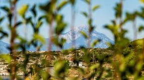Взгляд горы Athos через листья Стоковые Изображения