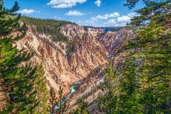 Взгляд гранд-каньона Йеллоустон Национальный парк Йеллоустона Вайоминг США стоковые изображения rf