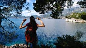 Взгляд девушки брюнет путешествуя с рюкзаком от задней части Девушка восхищает взгляд Зеленая зона с елями Стоковое Фото