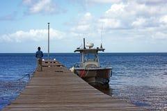 Взгляд деревянной пристани, которая ремонтирует доминиканского работника, от побережья острова Saona с морем и путешествием бирюз стоковые изображения rf