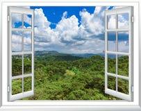 Взгляд джунглей от взгляда сверху из окна стоковое фото