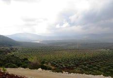 Взгляд долины - долина Netofa в Израиле стоковые изображения