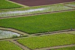 взгляд долины hanalei Стоковое Изображение