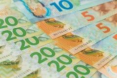 взгляд долларов Новой Зеландии Стоковое фото RF