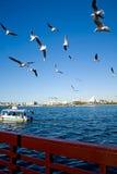 взгляд Дубай заводи стоковое изображение