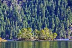 Взгляд залива Гордон в озере Cowichan во время падения, ДО РОЖДЕСТВА ХРИСТОВА, Канада стоковая фотография rf