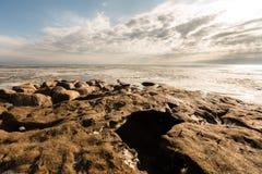 Взгляд замороженного моря стоковые фото