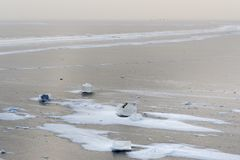 Взгляд замороженного Gulf of Finland в wiinter святой petersburg России моста okhtinsky стоковые фото