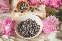 Взгляд замороженной голубики красной смородины blackcurrant ягод в домашнем интерьере живя комнаты Уютная концепция весны стоковые фото