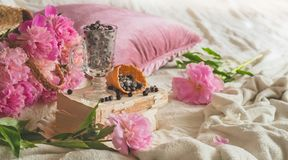 Взгляд замороженной голубики красной смородины blackcurrant ягод в домашнем интерьере живя комнаты Уютная концепция весны стоковые изображения rf
