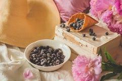 Взгляд замороженной голубики красной смородины blackcurrant ягод в домашнем интерьере живя комнаты Уютная концепция весны стоковая фотография rf