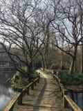 Взгляд западного озера Западное озеро пресноводное озеро в Ханчжоу, Китае Оно разделено в 5 разделов 3 мощеными дорожками стоковое фото rf