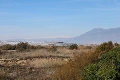 Взгляд засушливых поля и парника стоковая фотография rf