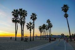 Взгляд захода солнца с ладонями в пляже Санта-Моника стоковое изображение