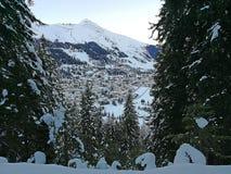 Взгляд зимы Давос от горнолыжного склона леса Швейцария стоковое фото rf