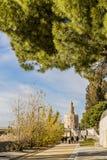 Взгляд идя пути около канала de Альфонс в Севилье Испании стоковые изображения rf