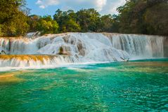 Взгляд изумительного водопада при бассейн бирюзы окруженный зелеными деревьями Agua Azul, Чьяпас, Palenque, Мексика стоковое фото rf