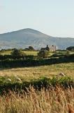 взгляд Ирландии сценарный Стоковая Фотография RF