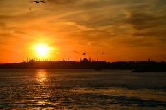 Взгляд исторического района Fatih от мраморного моря, Стамбула, Турции Стоковое Изображение