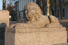 взгляд каменного льва и здания с куполом стоковое фото rf