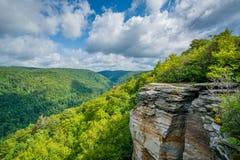 Взгляд каньона Blackwater от пункта Lindy, на падениях парке штата Blackwater, Западная Вирджиния стоковая фотография