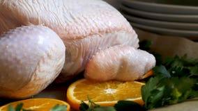 Взгляд крупного плана всего сырцового цыпленка с свежими клюквами петрушки и оранжевыми кусками на олове подноса выпечки подготов Стоковое фото RF