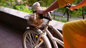 Взгляд крупного плана непознаваемой женщины ехать велосипед города с корзиной и цветками съемка steadicam Slowmotion акции видеоматериалы