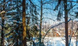 Взгляд курортного поселка от края леса стоковое фото