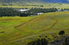 Взгляд к долине реки Chulyshman, Altai стоковое фото