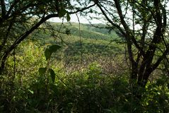 Взгляд к естественному отверстию Стоковые Фото