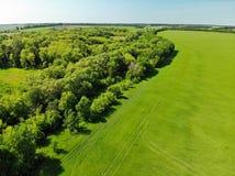 взгляд к сельской местности в лете в зоне Lipetsk в России стоковое фото rf