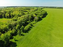 взгляд к сельской местности в лете в зоне Lipetsk в России стоковая фотография