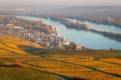 Взгляд к Ruedesheim вдоль реки Рейна Стоковые Изображения