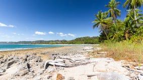 Взгляд ладоней Коста-Рика пляжа самары стоковое изображение rf