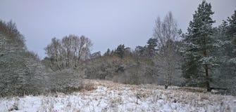 Взгляд ландшафта зимы взгляда, южной Богемии Стоковые Фотографии RF