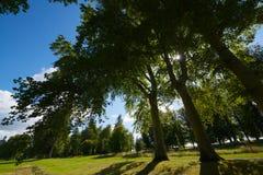 Взгляд ландшафта Нормандии Стоковое фото RF