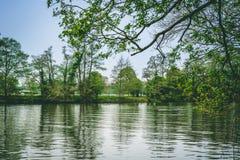 Взгляд ландшафта Темза реки с утками и лошадью стоковое фото rf