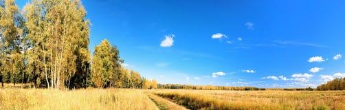 взгляд ландшафта Стоковая Фотография
